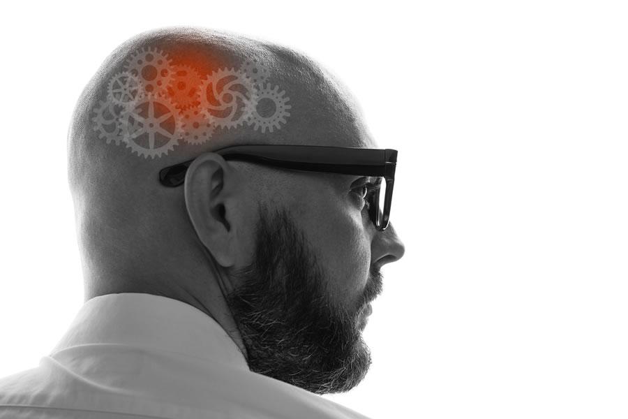 Exclusivo: Neurociência Organizacional na gestão de pessoas e na Comunicação Interna